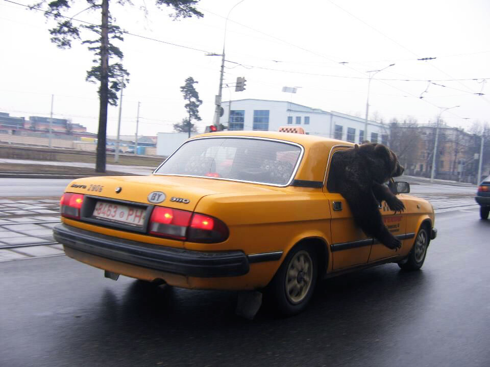 CLUB GIGGLE beartaxi Meanwhile in Mother Russia 47 Pics...