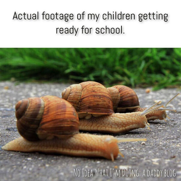 CLUB GIGGLE 24 35 Funy Parenting Memes That Prove Parenting Is Challenging
