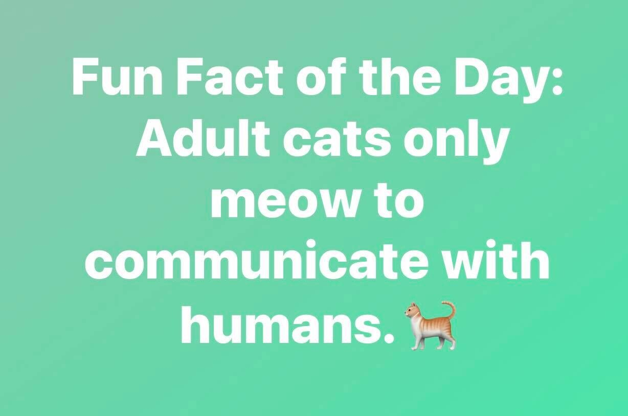 CLUB GIGGLE weird-facts16 25 Weird Fun Facts Of The Day
