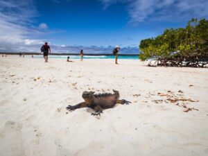 CLUB GIGGLE Galapagos-Islands-Ecuador-300x225 Top Ten Wonders of Nature! (Part 1)