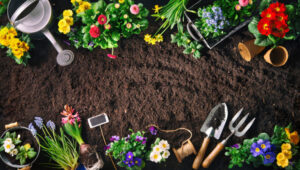 CLUB GIGGLE Gardening-300x170 Top Ten Hobbies for Women 55 and Older