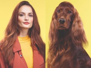 CLUB GIGGLE long-brown-haired-womandog-300x225 Pets Who Are Identical To Their Owners