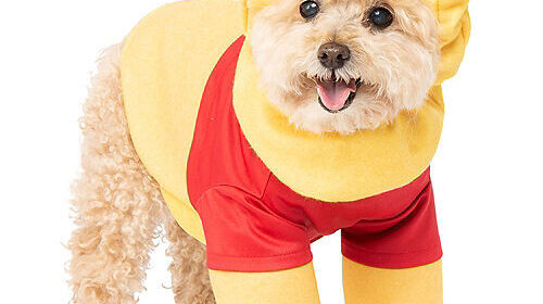 CLUB GIGGLE pooh-500x280 The Most Adorable Halloween Costume For Dogs