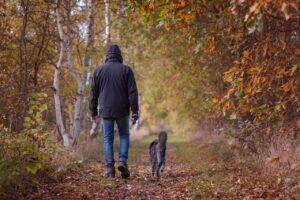CLUB GIGGLE autumn-walk-1792812_1280-300x200 Fall Bucket List 2021